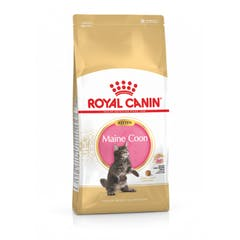 Royal Canin Maine Coon Chaton 4kg