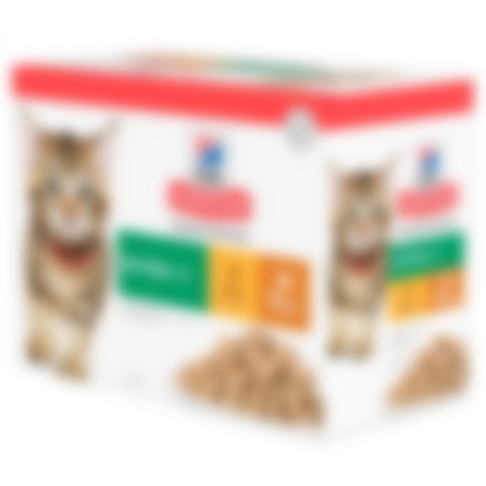 Hill's Science Plan Kitten Poultry Selection Multipack Poulet 12x85g