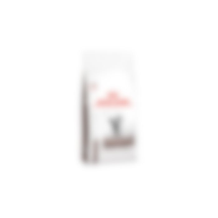 Royal Canin Gastro Intestinal Moderate Calorie pour chat 2kg