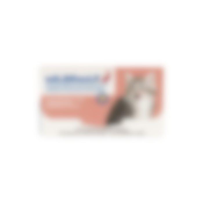 Milbemax Kleine Kat 0,5-2kg - 20 Tabletten