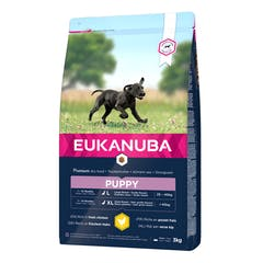 Eukanuba Puppy Large Breed - Hondenvoer Met Kip - 15kg