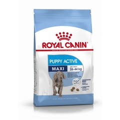 Royal Canin Maxi Puppy Active - Hondenvoer - 15kg