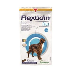 Flexadin Plus Maxi 30 Chews