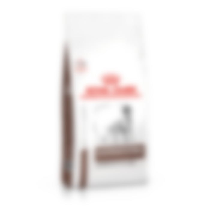 Royal Canin Gastro intestinal moderate calorie chien
