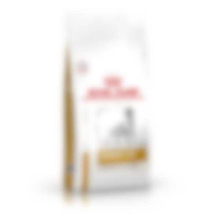 Royal Canin Urinary S/O Moderate Calorie - Hondenvoer - 6,5kg