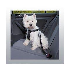 Harnais de sécurité pour auto