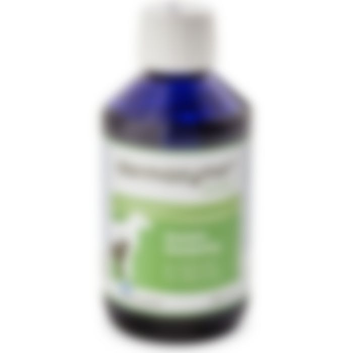 Dermazyme Losham Base Shampoo 240ml