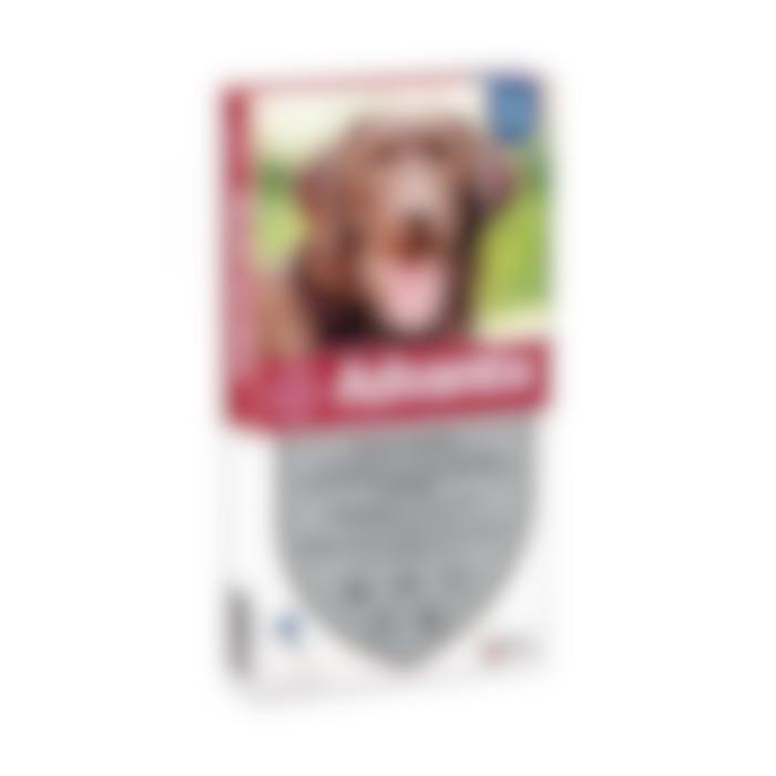 Advantix 400/2000 Spot-on Solution Voor Honden Vanaf 25kg 4pip