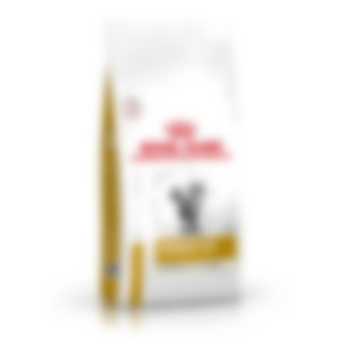 Royal Canin urinary moderate calorie chat