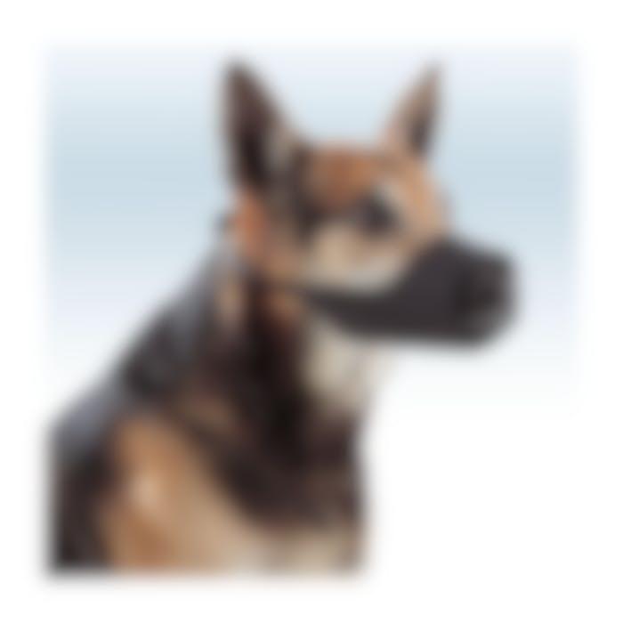 Muselière en nylon pour chien