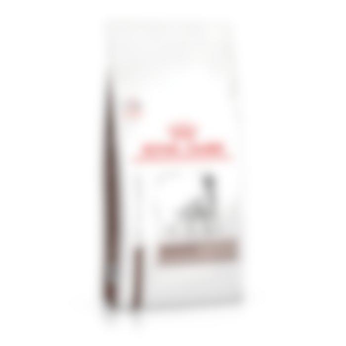https://pharmapets.imgix.net/media/catalog/product/cache/2cc48bd4269cb761a1ccbaa05288eba3/a/5/a53698de81e2e60ed0fe4fdbeebccaa0af7f53da2350a182d06b7e2bf0461e8c.jpeg