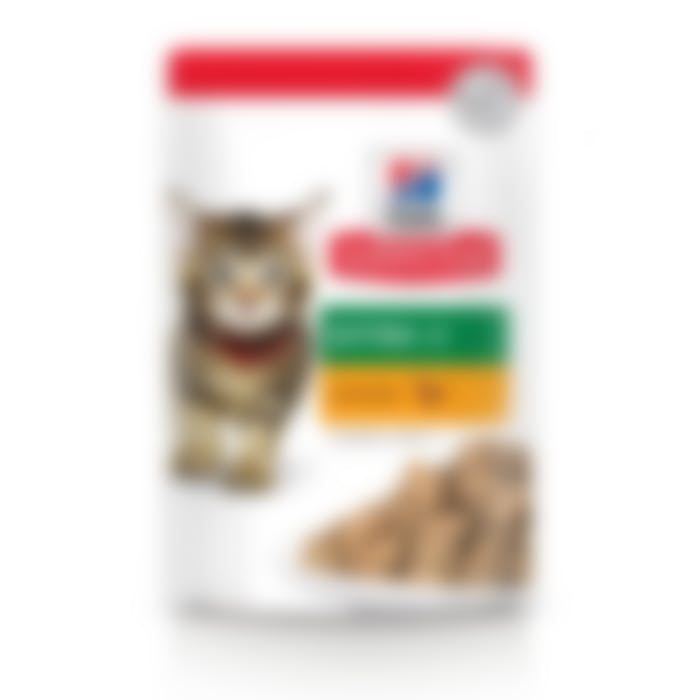 Hill's Science Plan Kitten sachet repas pour chaton au poulet 12x85g