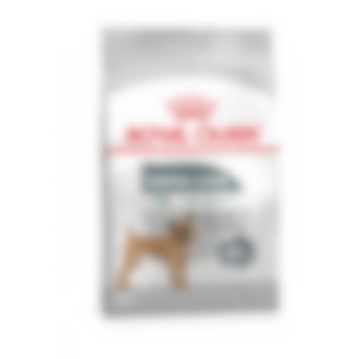 Royal Canin Mini Dental Pour Chien 1kg