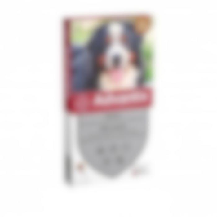 https://pharmapets.imgix.net/media/catalog/product/cache/2cc48bd4269cb761a1ccbaa05288eba3/4/2/42ceca73271b86a40863963020218a9c82dcfbc83d9a92ed5da607d2707e4ec7.jpeg