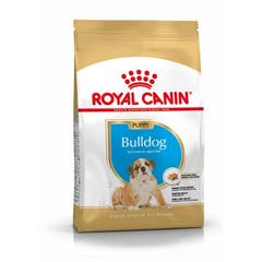 Royal Canin English Bulldog Chiot pour chien 12kg