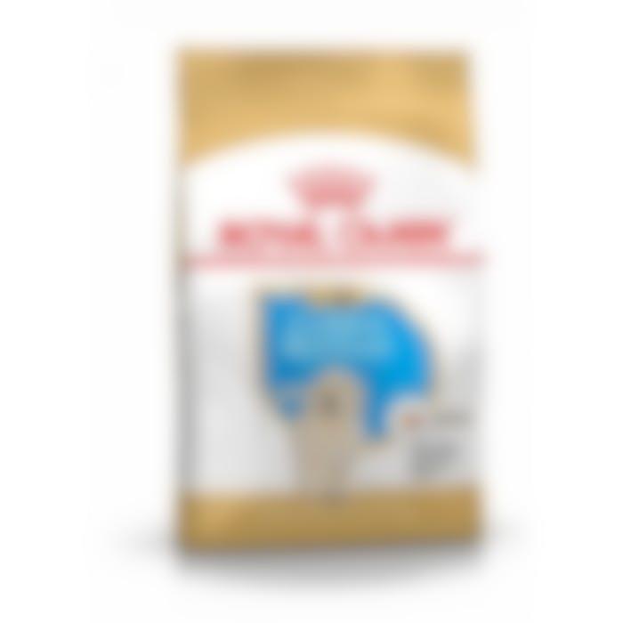 Royal Canin Golden Retriever Chiot pour chien 3kg