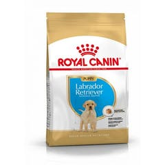 Royal Canin Labrador Retriever Puppy - Hondenvoer - 12kg
