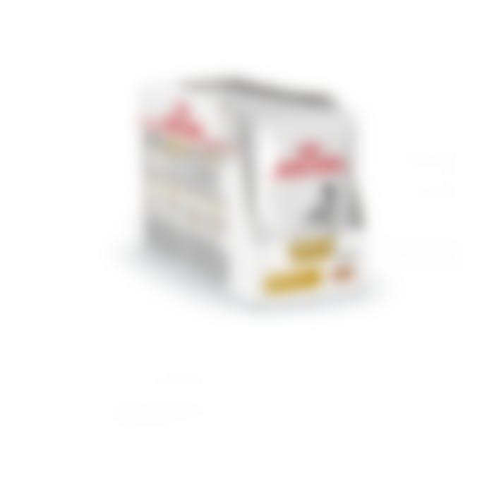 Royal Canin Urinary S/O sachets pour chien 12x 100g