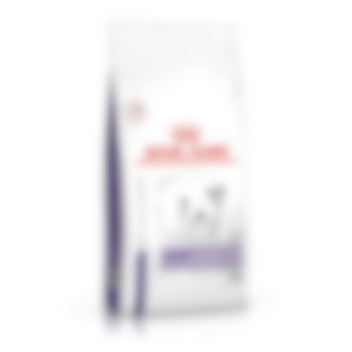 Royal Canin Chien Calm