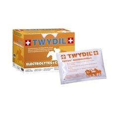 Twydil Electrolytes+C 10 sachets de 50g