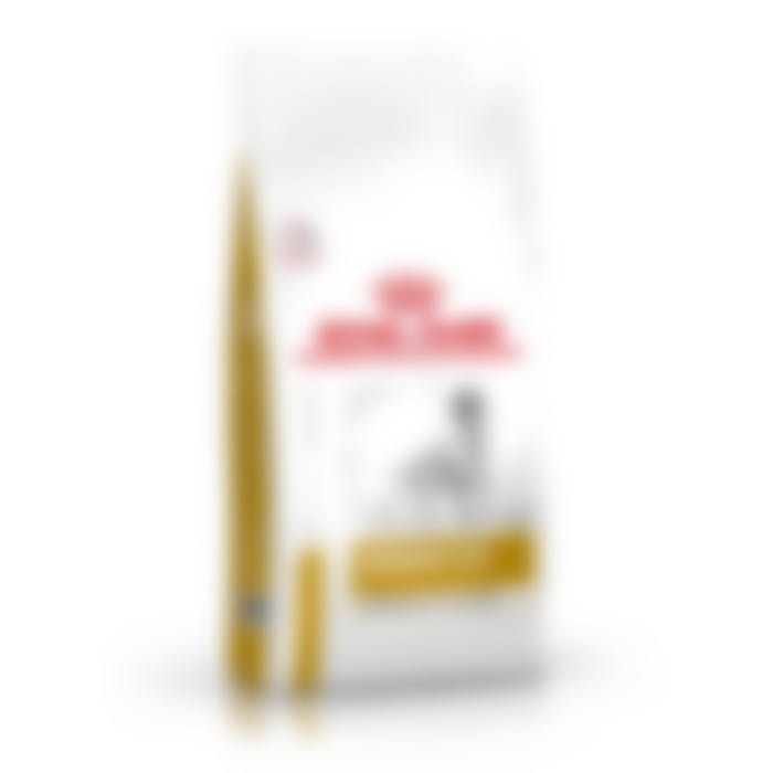Royal canin urinary moderate calorie chien