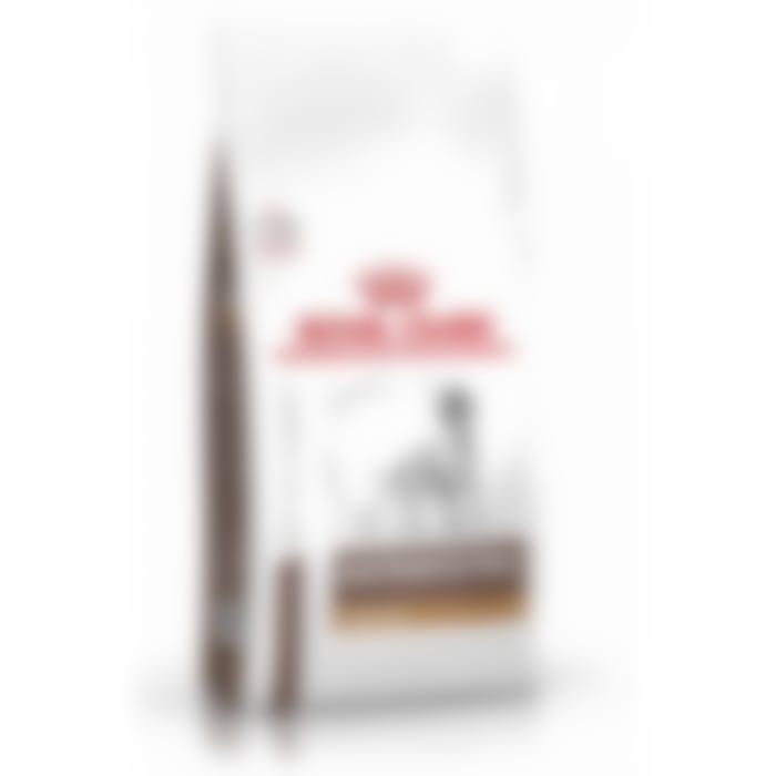 Royal Canin Gastro intestinal low fat chien