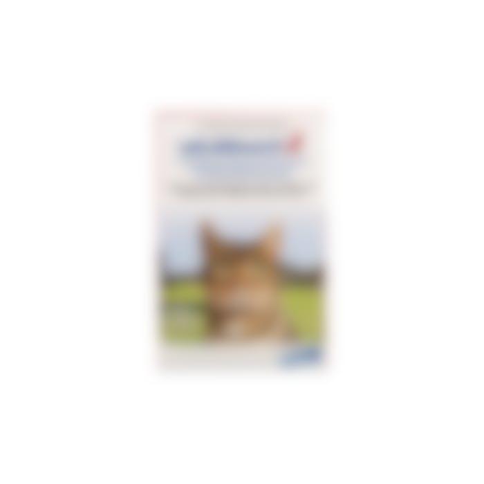 Milbemax Grote Kat 2-8kg - 2 Tabletten