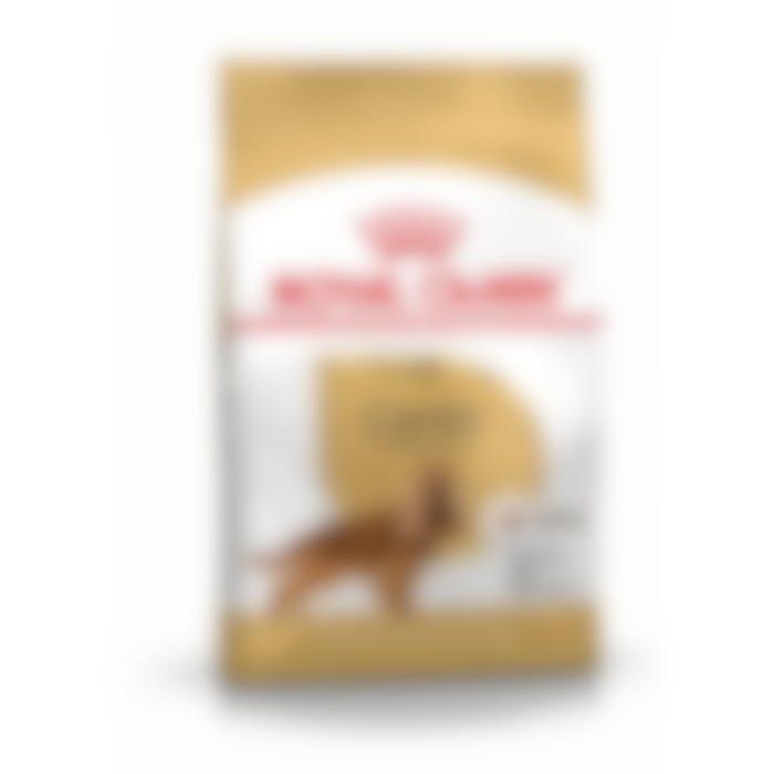 Royal Canin Cocker Adult - 12Kg