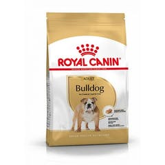 Royal Canin English Bulldog Adult pour chien 12kg