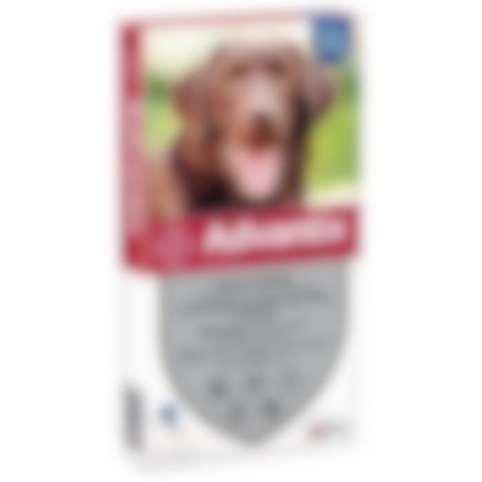 Advantix grand chien 25-40kg 6pip
