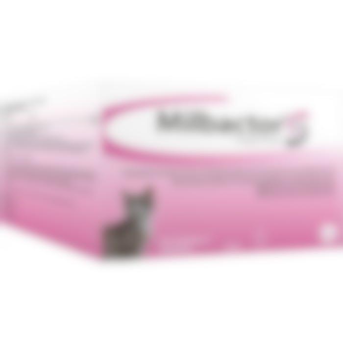 Milbactor Kleine Kat/kitten - 48 Tabletten