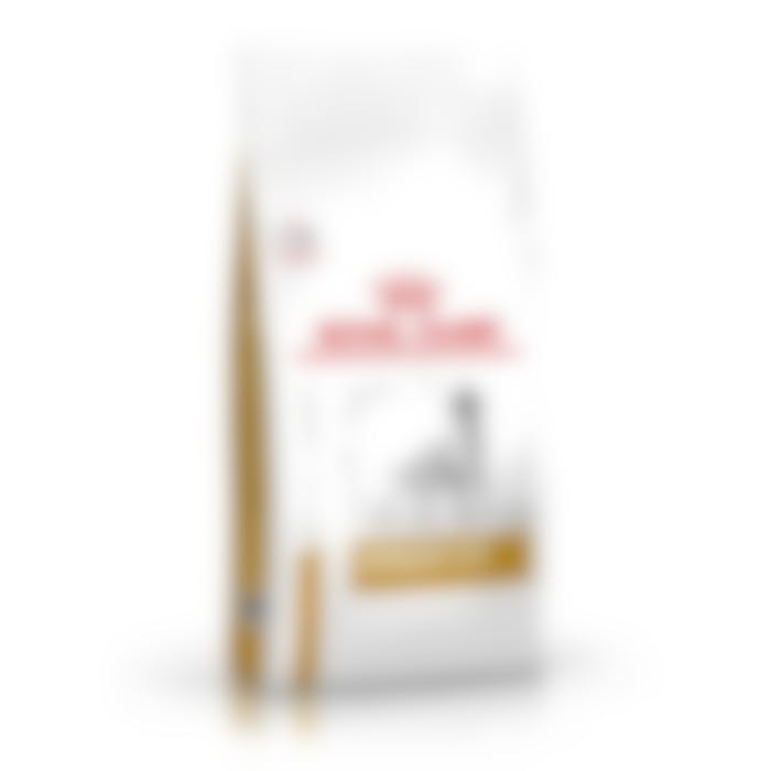 Royal Canin urinary chien