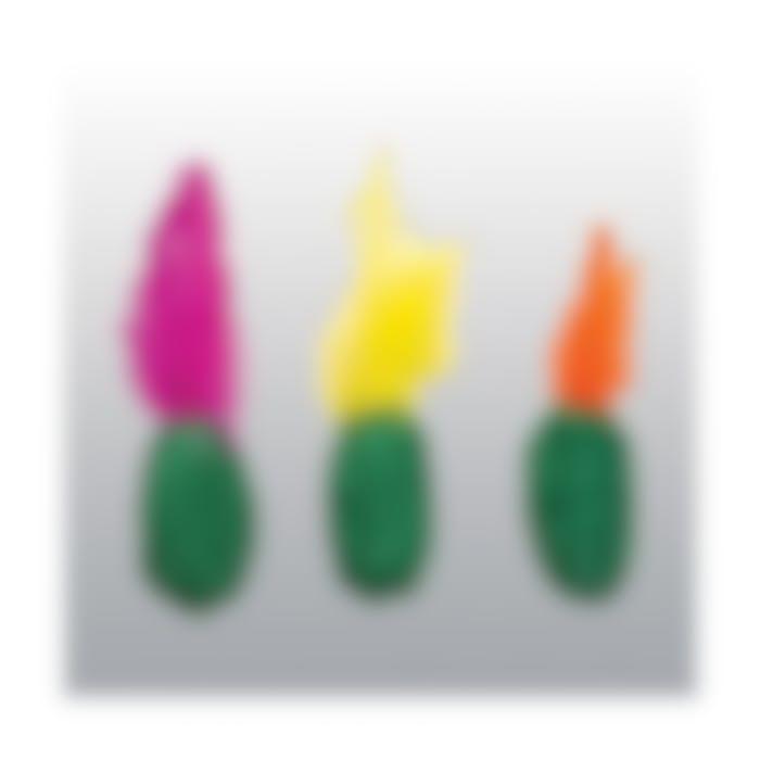 Jouet Mini Cactus pour Chat