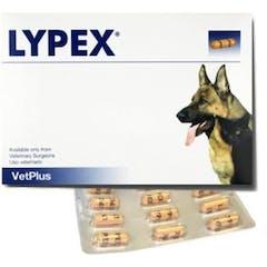 Lypex Hond-kat Caps 60