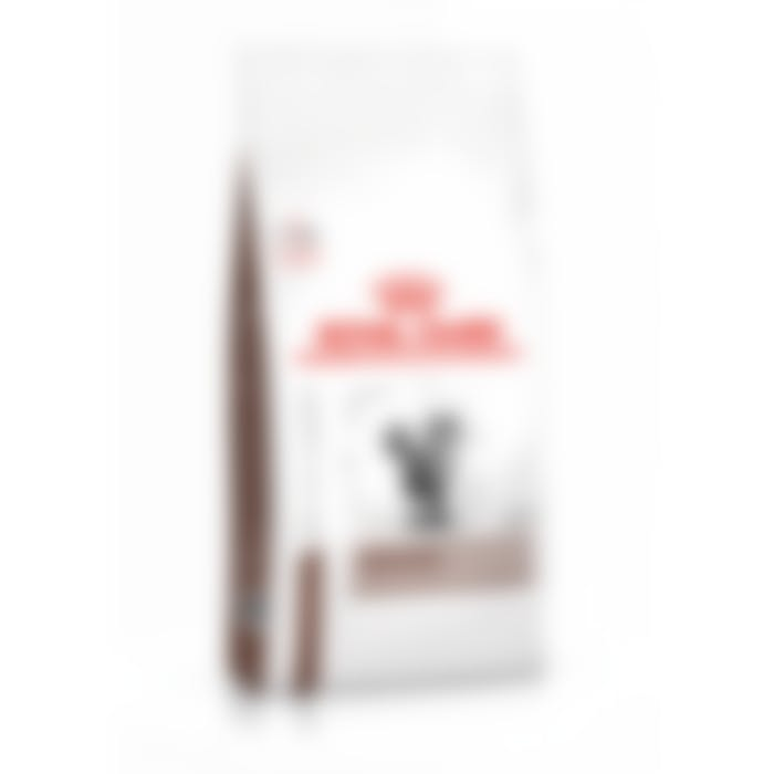 Royal Canin Hepatic pour chat 4kg