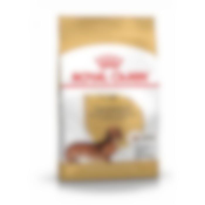Royal Canin Teckel/Dashond Adult - Hondenvoer - 1,5kg