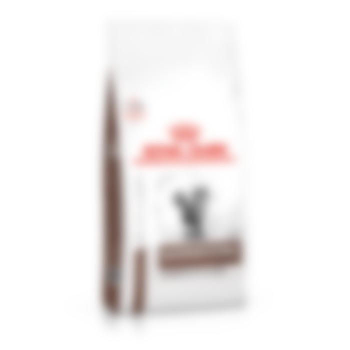 Royal canin Gastro intestinal moderate calorie chat