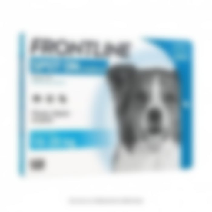 Frontline spot-on M chien 10-20Kg