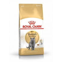 Royal Canin British Shorthair 34 - Kattenvoer - 4kg