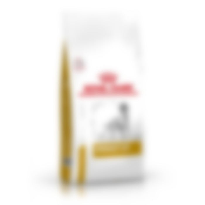 Royal canin urinary chien 2Kg