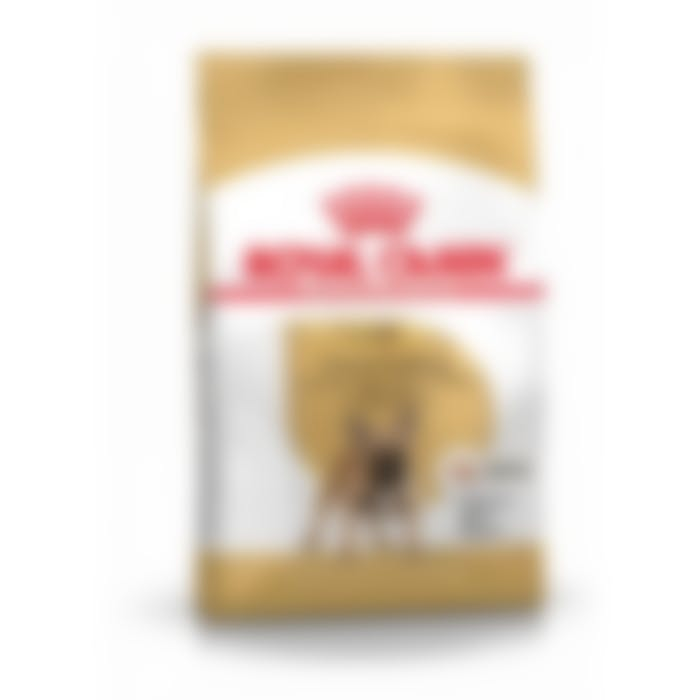 Royal Canin French Bulldog Adult pour chien 3kg