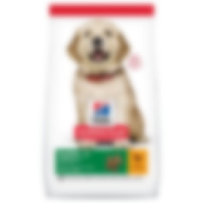 Hill's Science Plan Puppy Large Breed pour chien 2,5kg