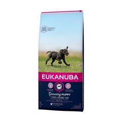 Eukanuba Puppy&Junior Large Breed – Hondenvoer – 12kg
