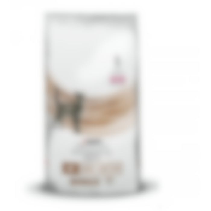 Purina veterinary diet NF chat 350g