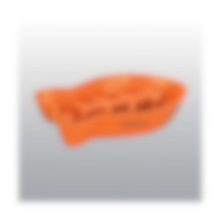 Gamelle Anti-Glouton Poisson Orange