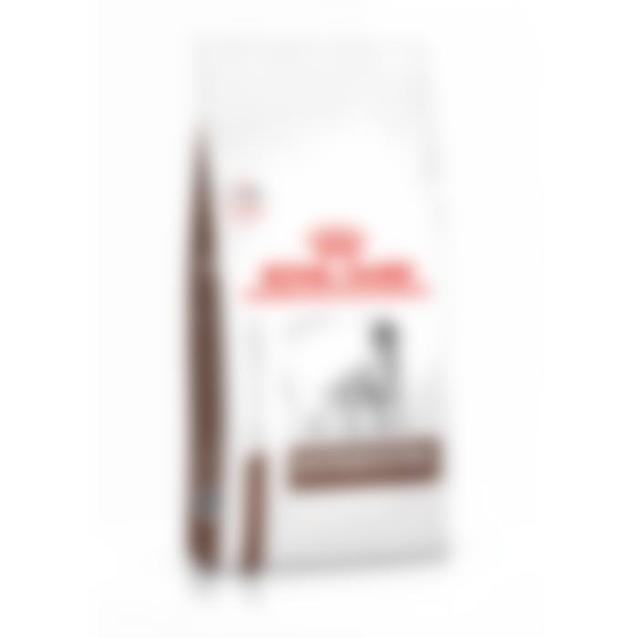 Royal Canin Gastro Intestinal pour chat 7,5kg