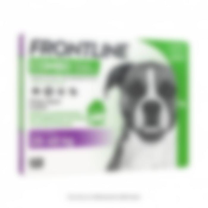 Frontline Combo L chien 20-40 kg