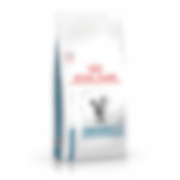 Royal Canin Young Female Skin pour chat 1,5kg