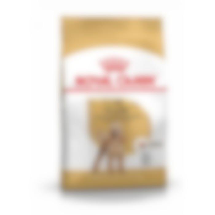Royal Canin Poodle/Poedel Adult - Hondenvoer - 1,5kg
