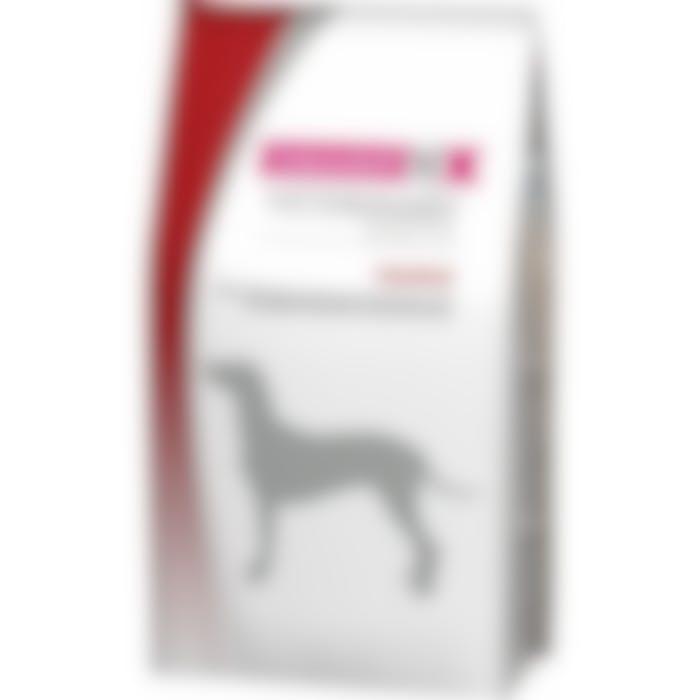 Eukanuba Vdiet Intestinal pour chien 12kg
